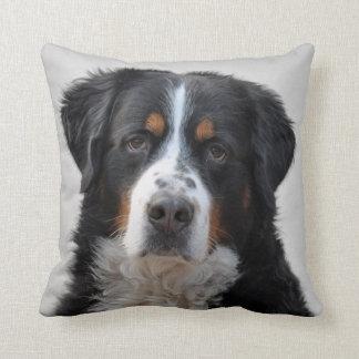 Bernese Mountain dog beautiful photo cushion