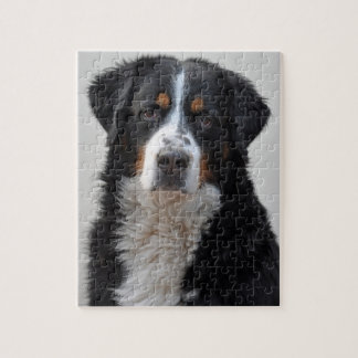 Bernese Mountain dog beautiful photo jigsaw puzzle