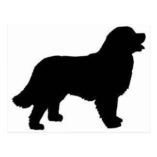 Bernese Mountain Dog (black silhouette) Postcard
