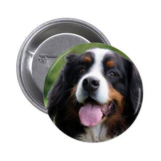 Bernese Mountain dog button pin gift idea