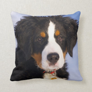 Bernese Mountain Dog - Cute Puppy Photo Cushion