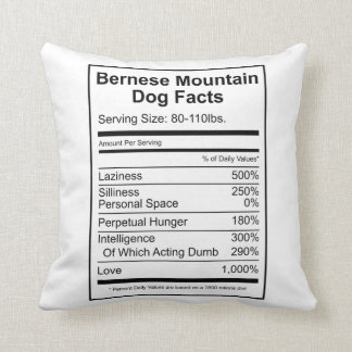 Bernese Mountain Dog Facts - Cushion