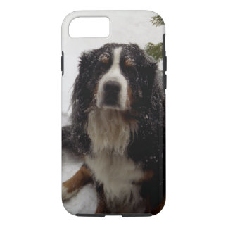 Bernese Mountain Dog in Snow Storm 2 Phone Case