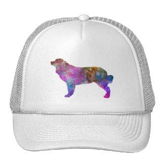 Bernese mountain dog in watercolor 2 cap