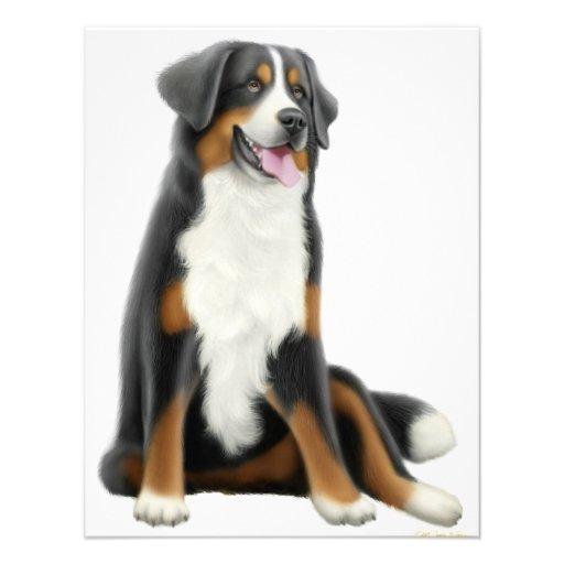 Bernese Mountain Dog Invitation