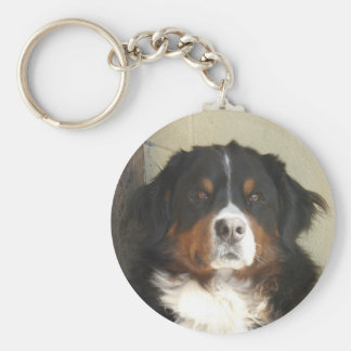 Bernese Mountain Dog Key Ring