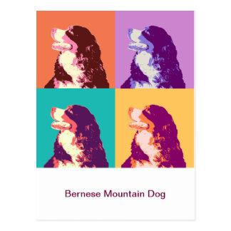 Bernese Mountain Dog Pop Art Postcard