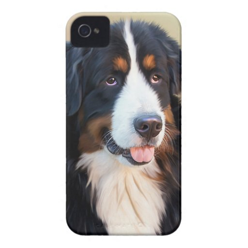 Bernese Mountain dog portrait blackberry bold case