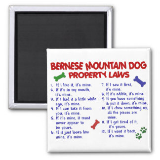 BERNESE MOUNTAIN DOG Property Laws 2 Square Magnet