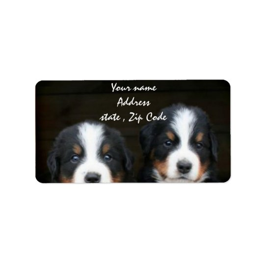 Bernese Mountain dog puppies address label