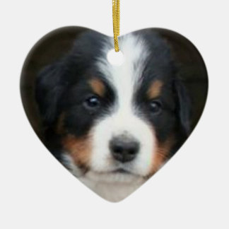 Bernese mountain dog puppies ornament