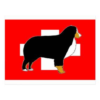 bernese mountain dog silhouette on flag tan postcard