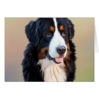 Bernese mountain dog, the obedient dog card