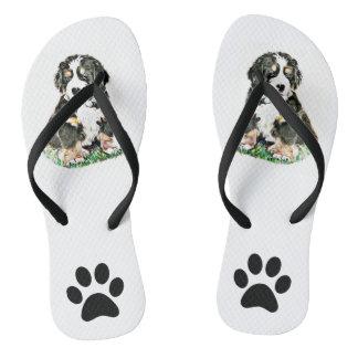 Bernese Mountain Dog Thongs