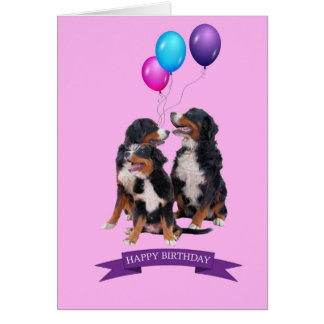 Bernese Mountain Dogs Happy Birthday Greeting Card