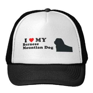 Bernese Mountian Dog Hats