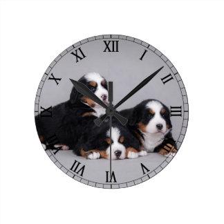 Bernese puppies round clock