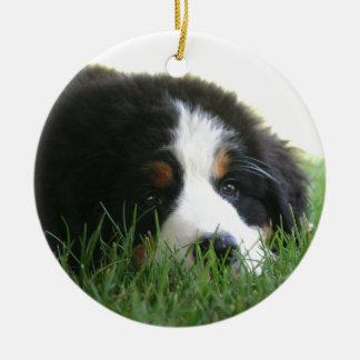Bernese Puppy Ceramic Ornament