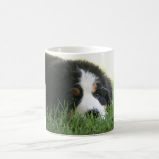 Bernese Puppy Mug