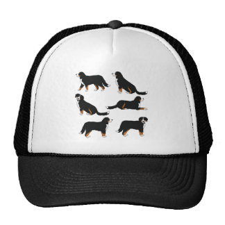 Bernese Sennenhund selection Cap