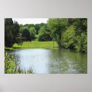 Bernheim Forest Pond Print