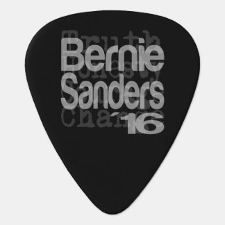 Bernie Sanders For President 2016 Plectrum