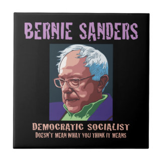Bernie-What You Think It Means Small Square Tile