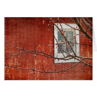 Berries and Barn, Christmas Greeting Card