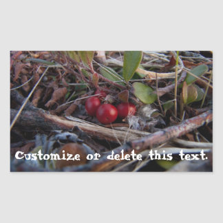 Berries and Twigs; Customizable Rectangular Sticker