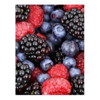 berries background postcard