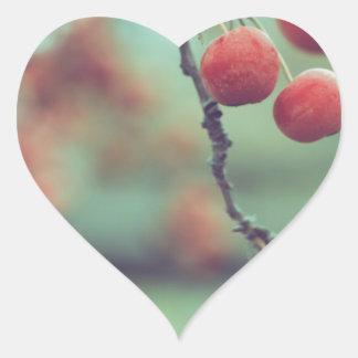 Berries Heart Sticker