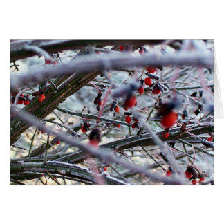 Berries in frost greeting card