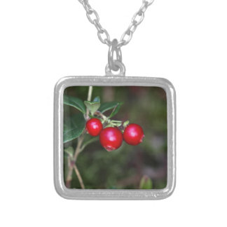 Berries of a wild lingonberry (Vaccinium vitis-ide Silver Plated Necklace