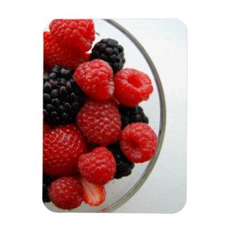 Berries Rectangular Photo Magnet