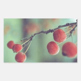 Berries Rectangular Sticker