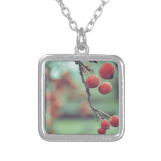Berries Silver Plated Necklace