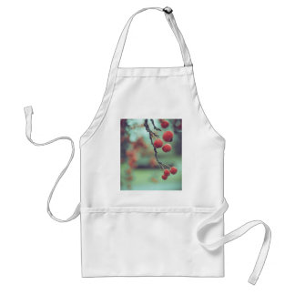 Berries Standard Apron