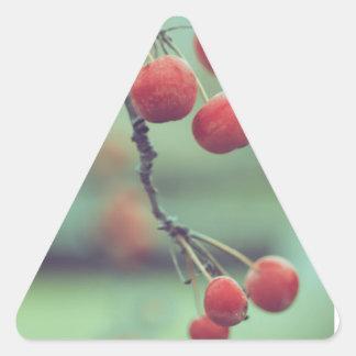 Berries Triangle Sticker