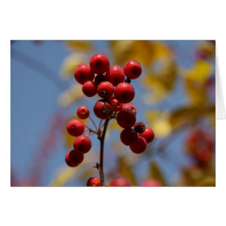 Berry Bouquet Greeting Card