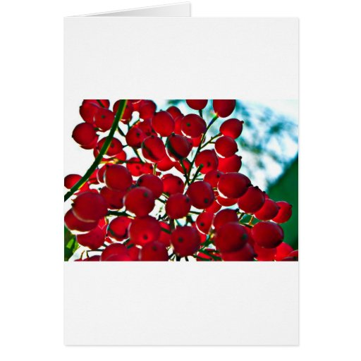 Berry Bunch Greeting Cards