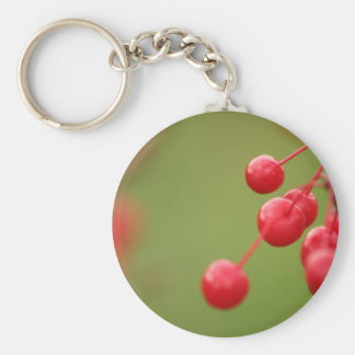 Berry Close keychain