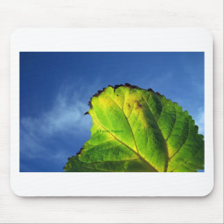 Berry leaf and Autumn colors Mouse Pad