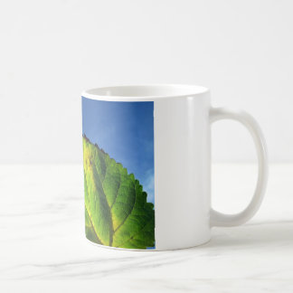 Berry leaf and Autumn colors. Mugs