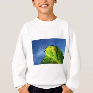 Berry leaf and Autumn colors. Sweatshirt