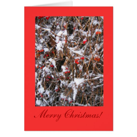 Berry Merry Christmas Card