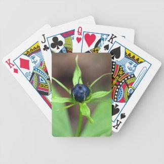 Berry of an herb paris (Paris quadrifolia) Bicycle Playing Cards