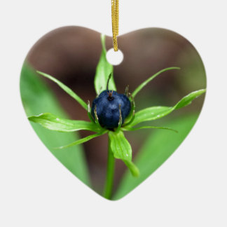 Berry of an herb paris (Paris quadrifolia) Ceramic Heart Decoration