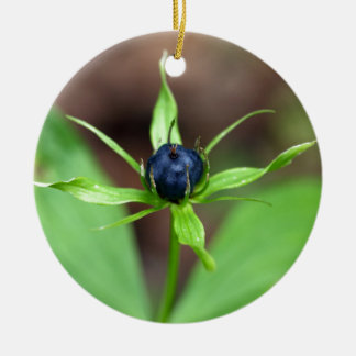 Berry of an herb paris (Paris quadrifolia) Ceramic Ornament