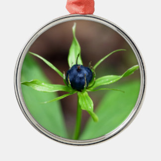 Berry of an herb paris (Paris quadrifolia) Metal Ornament
