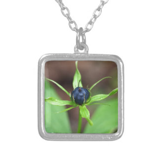 Berry of an herb paris (Paris quadrifolia) Silver Plated Necklace